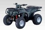 어드리 ATV-150